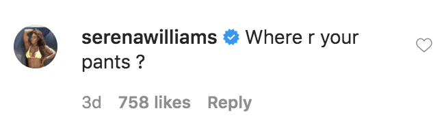 Serena Williams commented on a photo of Venus Williams cleaning her house in a swimsuit | Source: Instagram.com/venuswilliams