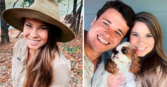Bindi Irwin Shares Series of Snaps with Husband Chandler Powell and Pup Piggy