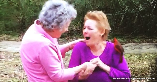 Elderly couple asked grandmother to send them a sign after death - and they got it with a bird