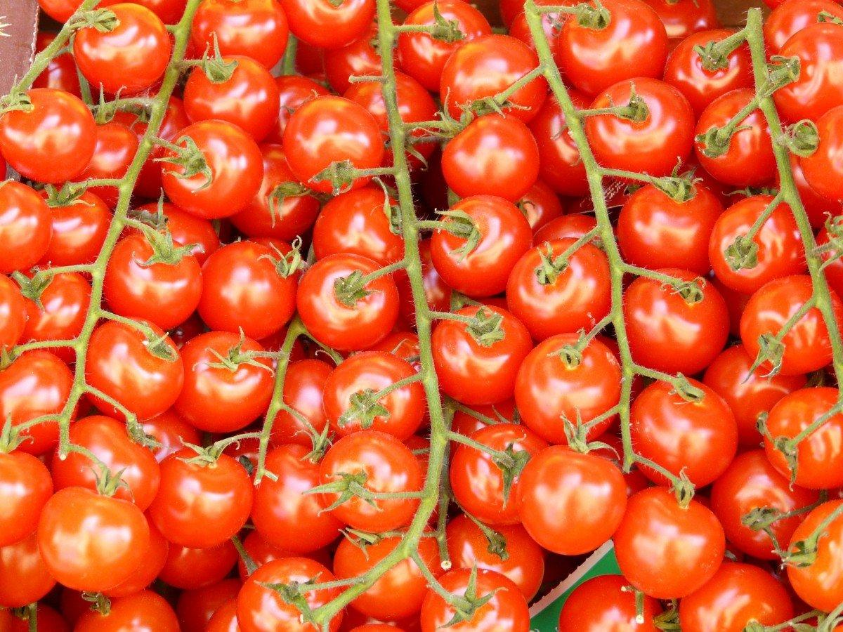 Tomates.   Image : PxHere