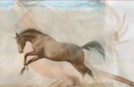 El caballo entre los animales. | Imagen: YouTube / Lo Mas Trending