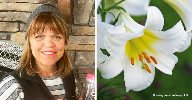 Amy Roloff Shares a Meaningful Easter Message for LPBW Fans