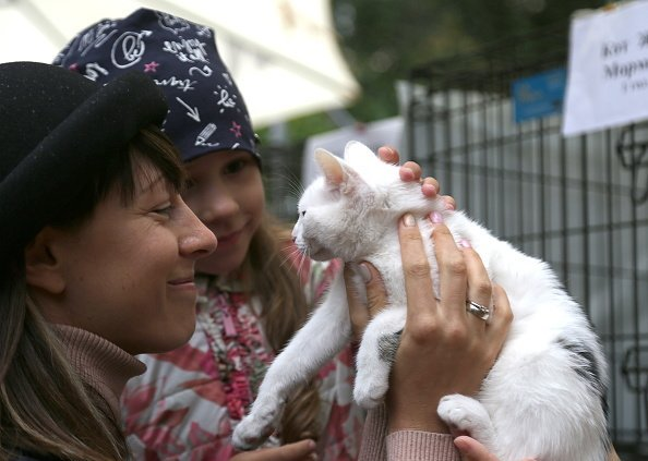 People look at a cat during the Drug Dlya Druga rehoming event in Bauman Garden Photo: Getty Images