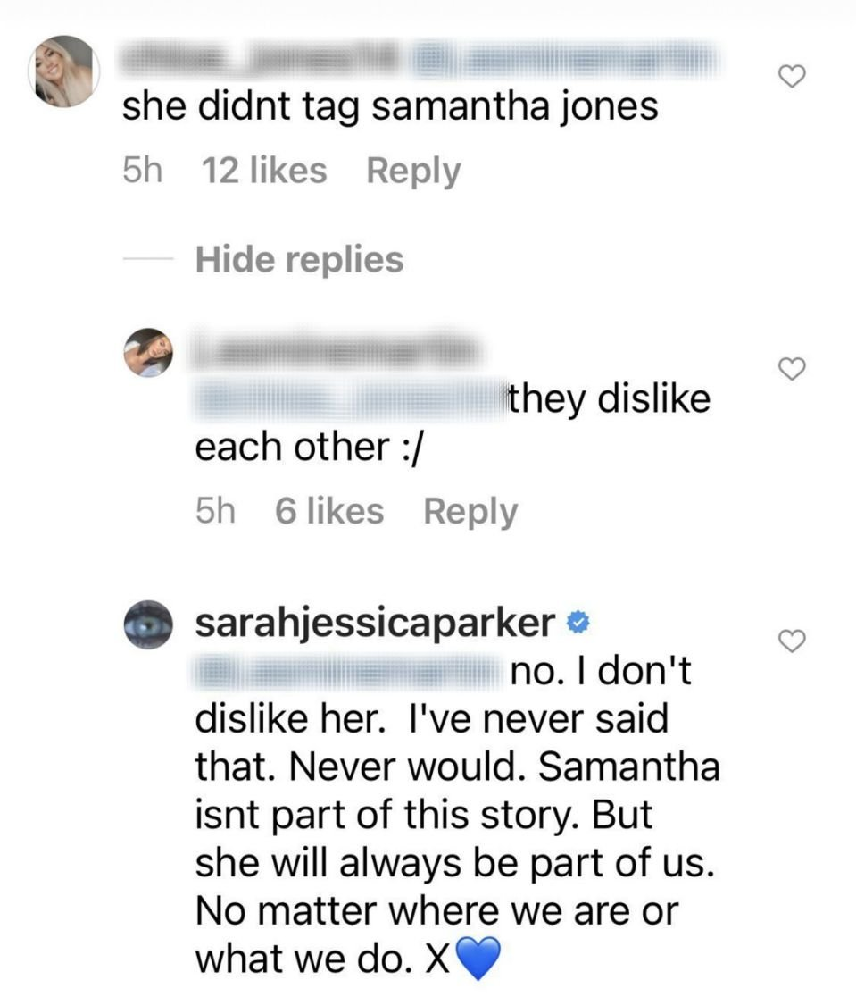Sarah Jessica Parker responds to a comment stating that she and Kim Cattrall dislike each other on January 11, 2020.   Source: Instagram/sarahjessicaparker.