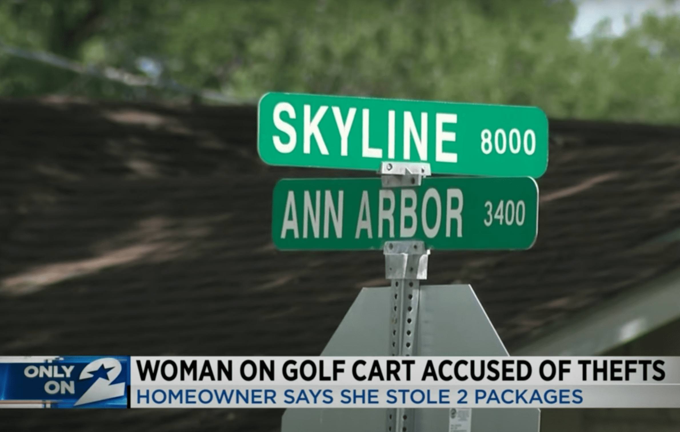 Street signs show the location where a woman allegedly stole two parcels from someone's front porch | Photo: Youtube/KPRC 2 Click2Houston