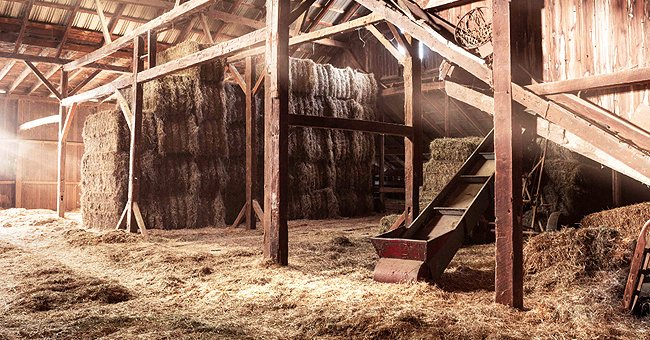 Daily Joke: Man Sees His Friend Dancing Without Clothes Around His Tractor in a Barn