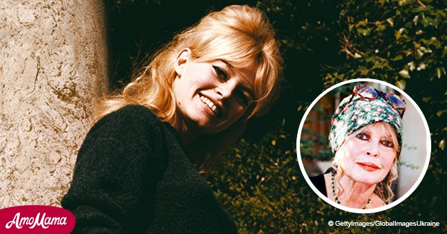 Remember Brigitte Bardot? Beauty icon is 84 years old now and she looks great