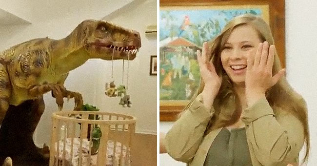 See Bindi Irwin's Hilarious Reaction as Chandler & Robert Reveal Grace's Dinosaur-Themed Nursery
