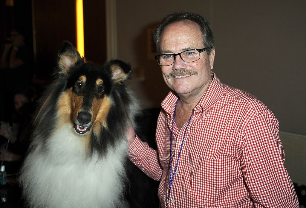 Lassie and actor Jon Provost participate in The Hollywood Show | Getty Images / Global Images Ukraine