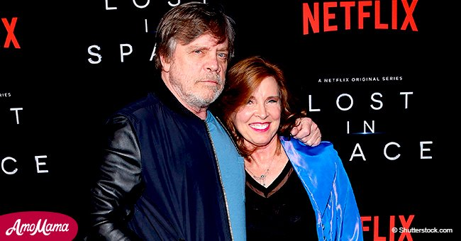 Mark Hamill celebrates 40 years of marriage captioning sweet collage with 'No me without you'