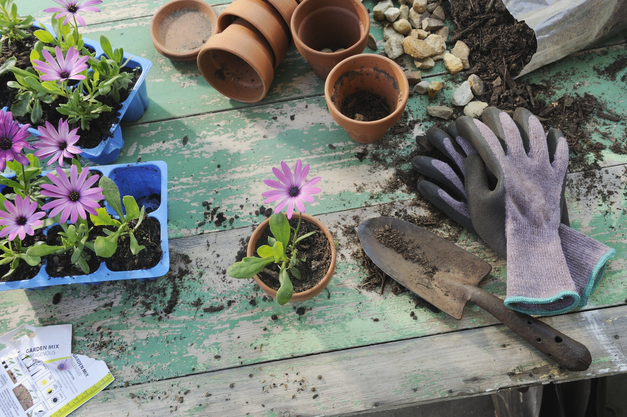Craft persons workspace (gardening)  | Photo: Getty Images