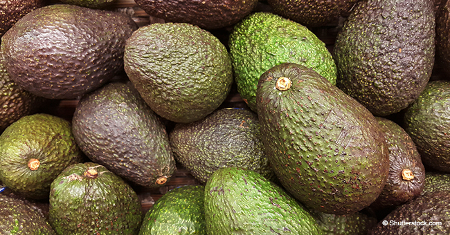 California Company Recalls Avocados Due to Fear of Possible Listeria