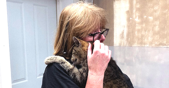 Cat Who Went Missing When He Was 3 Years Old Reunited with Owner after 11 Years