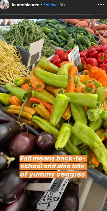 Lauren Bush shares images of vegetable on her Instagram story | Photo: instagram.com/laurenblauren