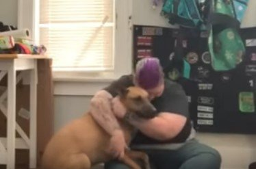 Photo of Man and Dog | Photo: Youtube / RM Videos