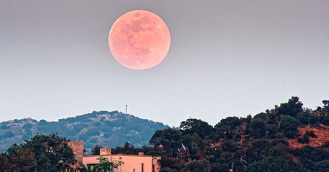 Year's Biggest Supermoon 'Pink Moon' Is Expected to Rise in Early April