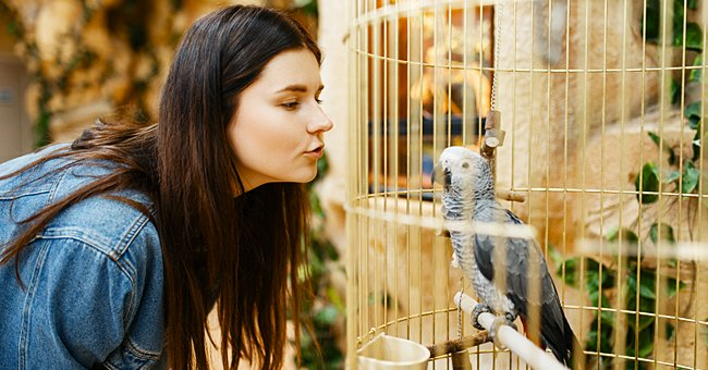 Daily Joke: A Woman Wants to Get a Parrot at an Auction