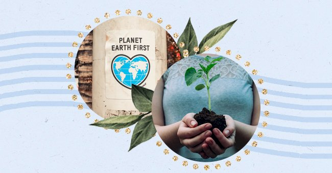 Top 10 Tips To Kick-Start Your Sustainable Living Journey