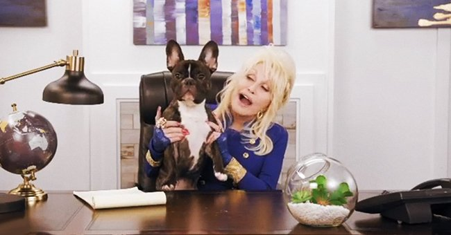 Dolly Parton Sings Happy Birthday to Her Beloved French Bulldog Billy the Kid in Adorable Video