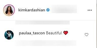 A fan's comment on Kim Kardashian's Instagram photo of her kids | Photo: Instagram.com/Kimkardashian