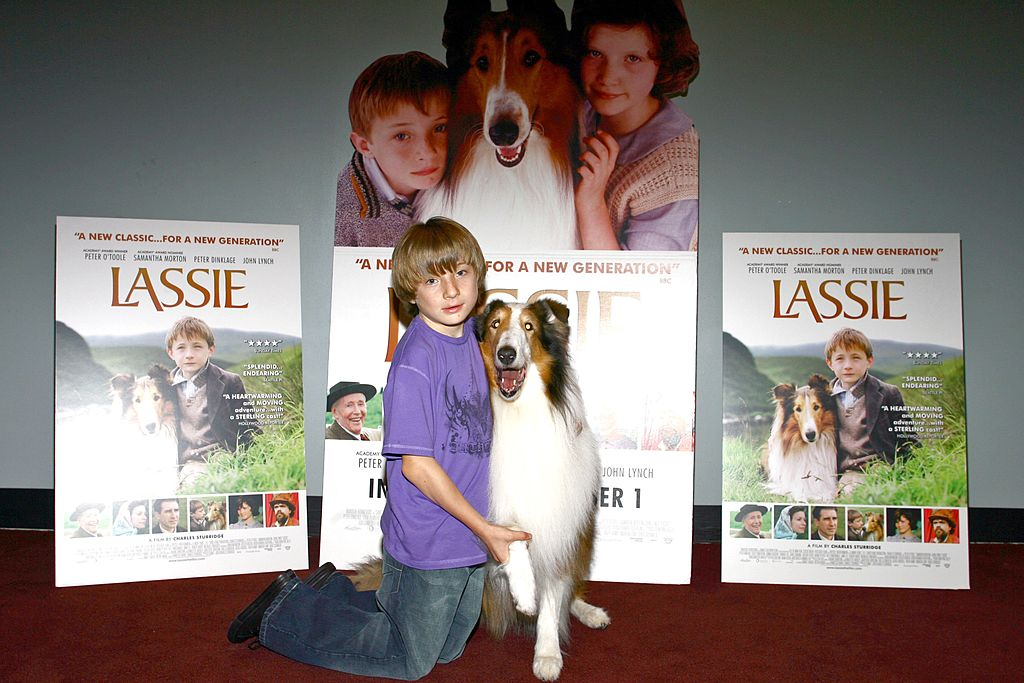 """r Jonathan Mason and Lassie pose for photos during the premiere of the new movie """"Lassie"""" 