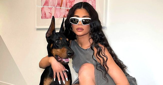 Kylie Jenner Looks Stylish Posing With Her Doberman in White Frame Sunglasses and a Gray Dress