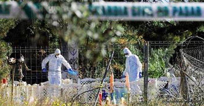 La muerte de los niños de Godella: Una tragedia evitable