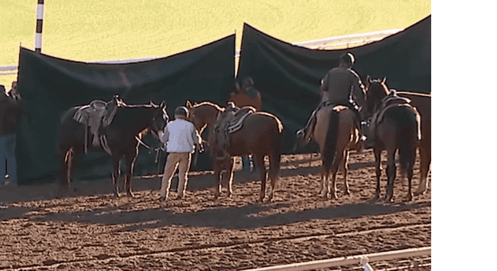 Horses and horseriders standing in front of two tarps concealing the injured filly | Photo: Fox 11 Los Angeles