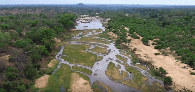 Kruger Nationalpark | Quelle: ABC Television Stations