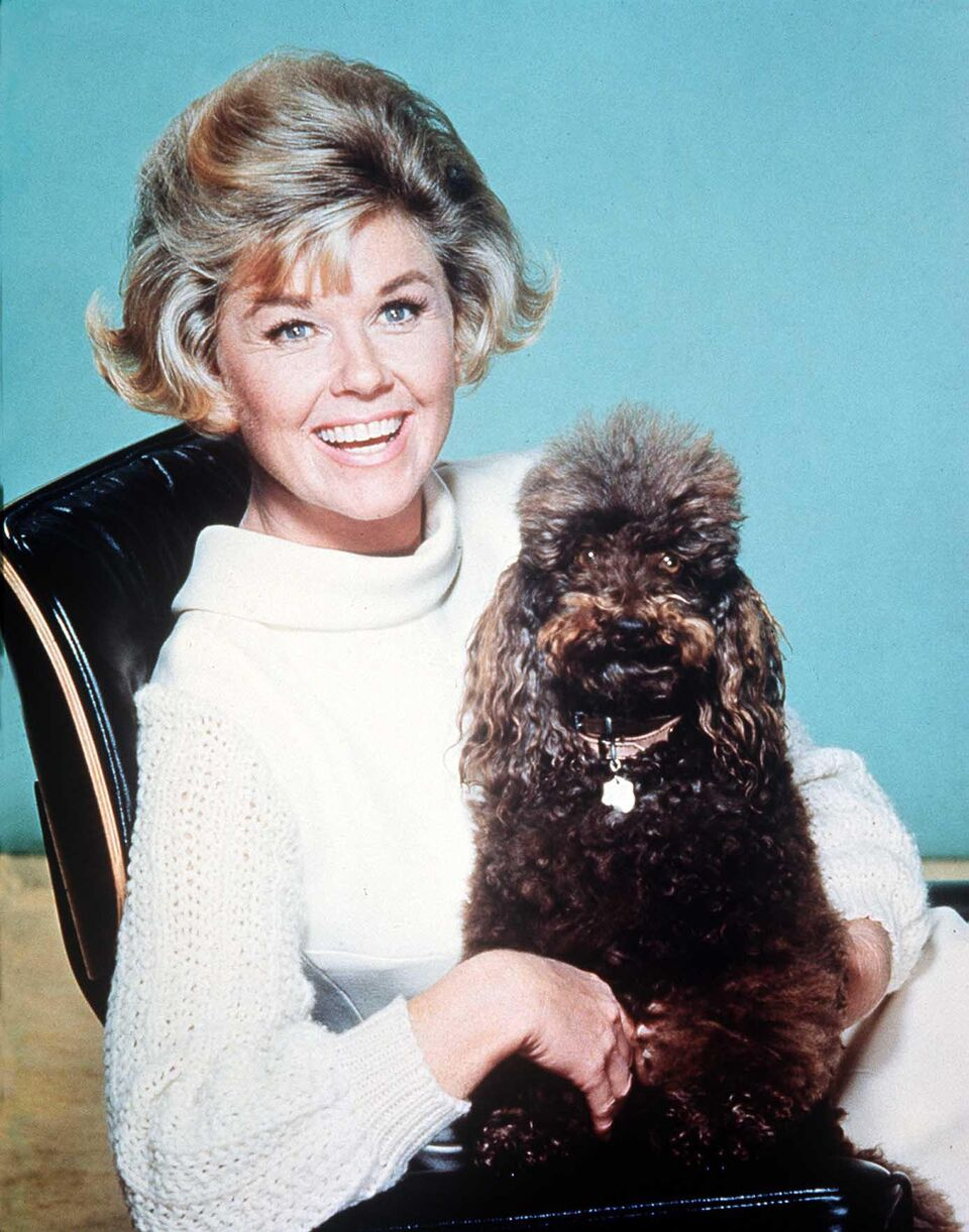 Doris Day, an animal activist. | Source: Getty Images