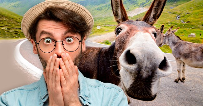Story of the Day: A Man Was on Way to the Market with His Donkey