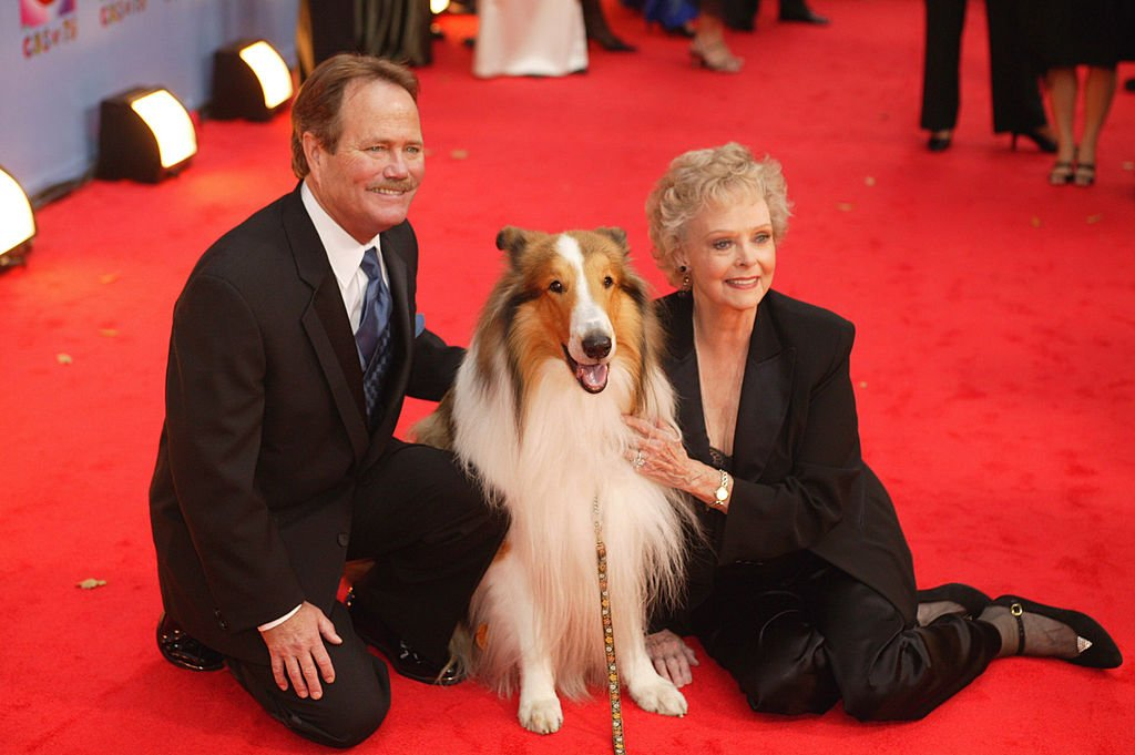 Lassie, Jon Provost and June Lockhart during CBS at 75 at Hammerstein Ballroom in New York City on November 02, 2003. | Photo: Getty Images