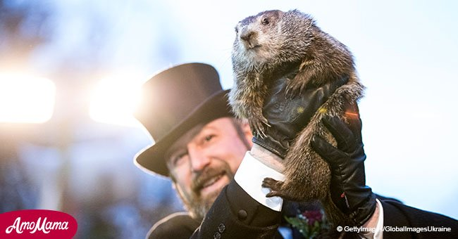 Famous Punxsutawney groundhog predicts spring will arrive earlier this year
