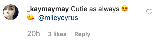 Fan gushing over how adorable Miley Cyrus looked she looked as young girl in her Halloween costume | Source: instagram.com/mileycyrus