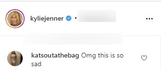A fan's comment under a picture posted by Kylie Jenner on Instagram | Photo: Instagram/kyliejenner