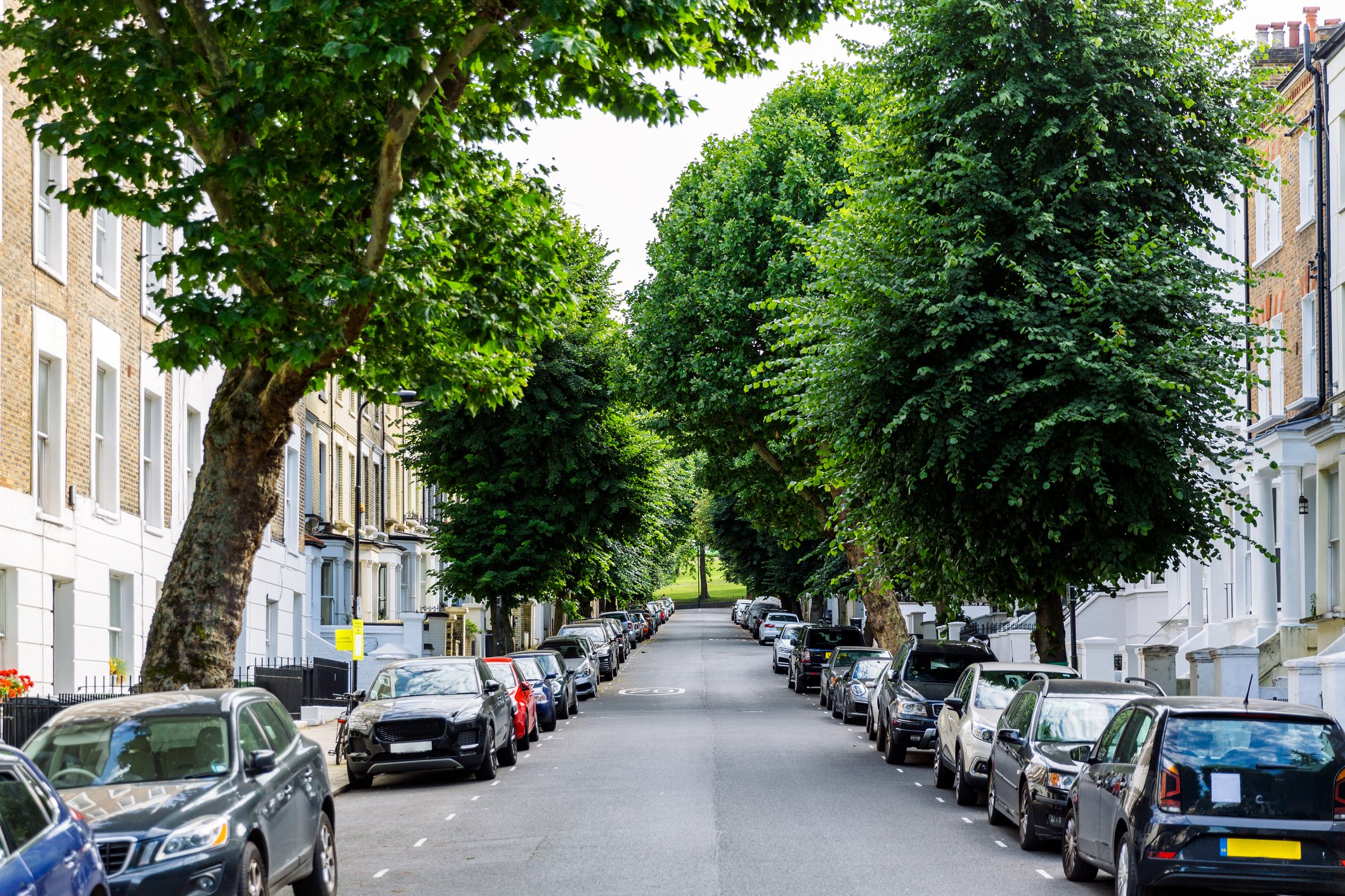 A picture of a street with trees and parked cars. | Photo: Getty Images