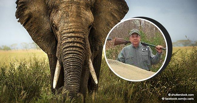"""""""Fue en defensa propia"""": la controversial justificación de empresario que mató a dos elefantes"""