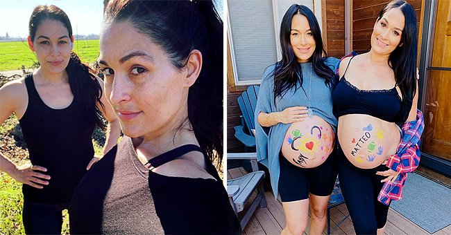 Brie Bella Makes New Revelation about Her Health Journey with Sister Nikki after Childbirth