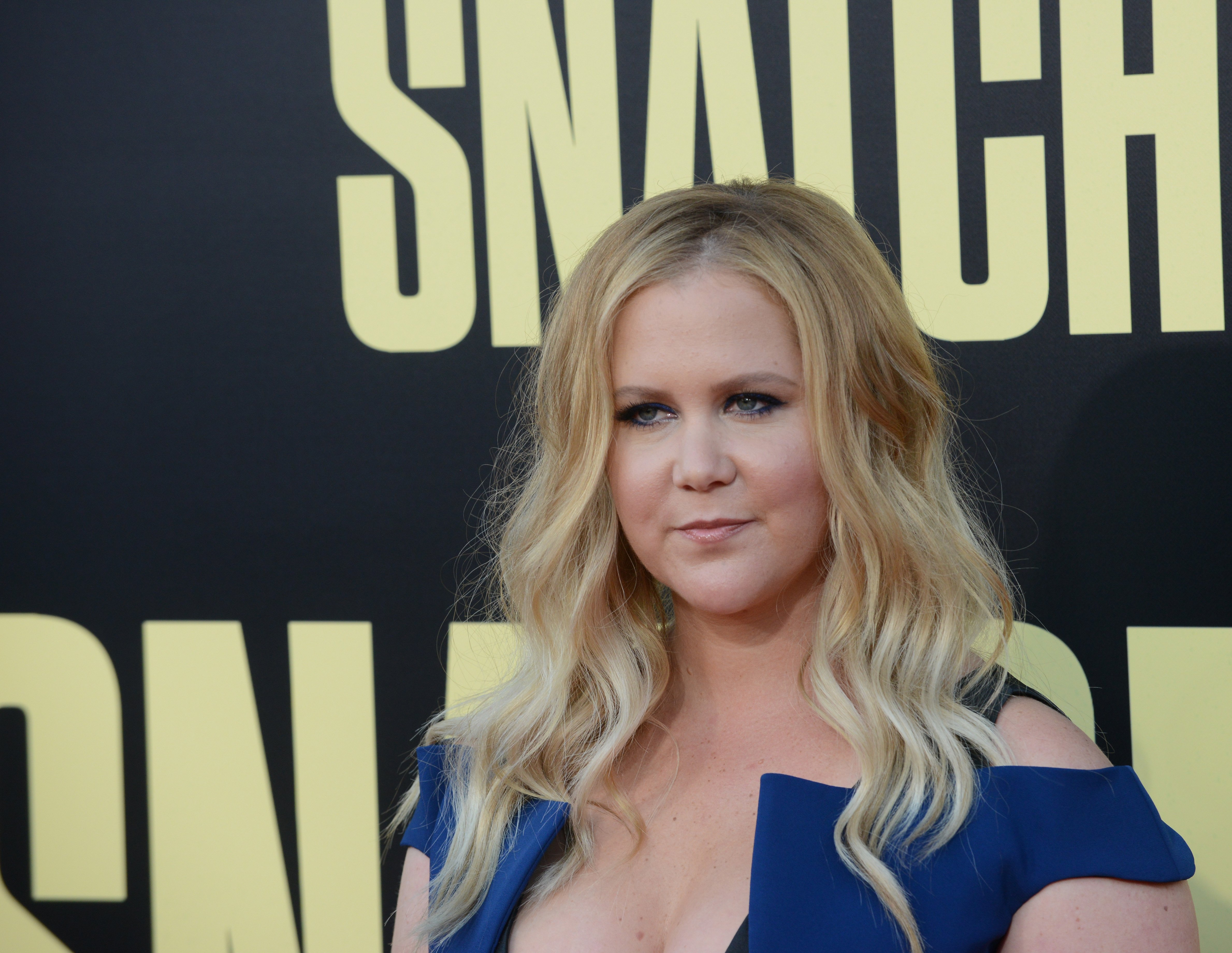 """Amy Schumer pictured at Premiere Of 20th Century Fox's """"Snatched,"""" 2017, California. 